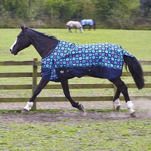 No fill turnout rug in blue/pink/navy check